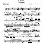 flautando_score